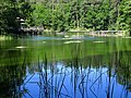 Jezioro Gardno - panoramio.jpg
