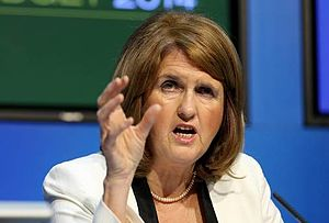 Labour Party (Ireland) - Joan Burton, Leader 2014–16