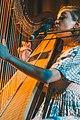 Joanna Newsom 20100729-00159 (28390428500).jpg