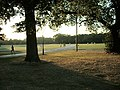 Jogging across the middle of The Common - geograph.org.uk - 376946.jpg