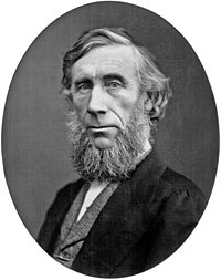 John Tyndall (scientist).jpg