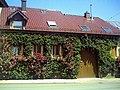 Juni in Ihringen - panoramio.jpg