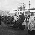 Kardinaal, Bestanddeelnr 901-8228.jpg