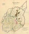 Karte Jagdrevier Gemeinde Hasel Baden 1904.png