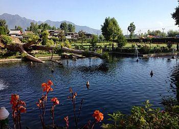 Kashmirgarden.jpg