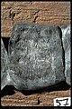 Kat nr 057 Bleck (bly) med runor - KMB - 16000300015764.jpg