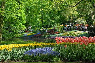 Garden tourism - Tourists at the Keukenhof Gardens