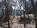 Kislovodsk, Stavropol Krai, Russia - panoramio (1).jpg
