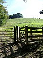 Kissing gate near Tower Hill - geograph.org.uk - 973227.jpg