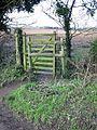 Kissing gate on footpath to Bridge - geograph.org.uk - 644303.jpg