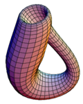 The Klein bottle immersed in three-dimensional space.