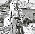 Komac Marija, Kal 11, drži v rokah koš (po starem žlič?nk) na njem m?tikca (motika) za bobo sadit 1952.jpg