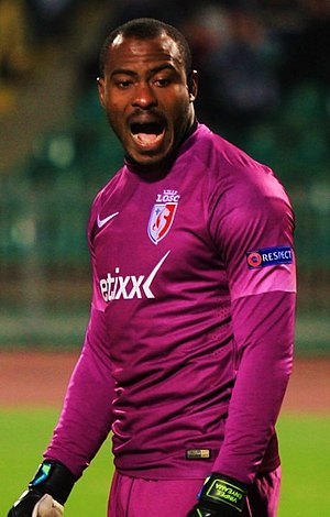 Vincent Enyeama - Enyeama playing for Lille in 2014