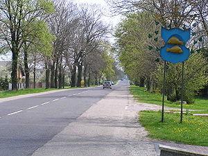 Krasnystaw - herb miasta