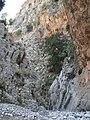 Kritsa Gorge.jpg