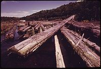 LOGS STORED ON CHAMBERS CREEK. THIS KIND OF STORAGE CAUSES DETERIORATION OF WATER QUALITY - NARA - 552178.jpg