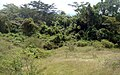 La Roca - panoramio (3).jpg