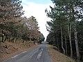La strada verso Trisulti - panoramio.jpg