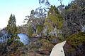 Lake Dobson.jpg