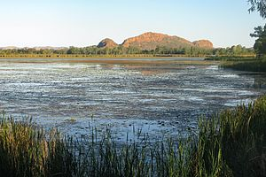 English: Lake Kununurra, Kimberley/Australia D...