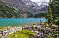 Lake O'Hara 2011 - panoramio.jpg