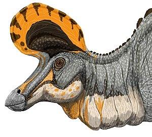 Dessin d'un lambéosaure (les couleurs sont inventées)