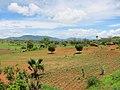 Landbouwgrond (6645733515).jpg