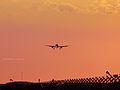 Landing in orange (8369617972).jpg