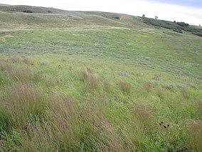 Landscape Sullys Hill National Game Preserve Fort Totten, North Dakota (5789616425).jpg