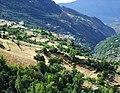 Landschaft bei Capileira03.jpg