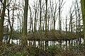 Landschap De Stroopers te Kemzeke - 371836 - onroerenderfgoed.jpg