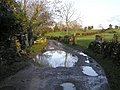 Lane at Gortaquinn - geograph.org.uk - 1118166.jpg