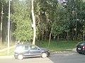 Lieninski District, Mogilev, Belarus - panoramio (373).jpg