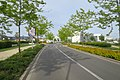 Lieusaint - 2019-05-07 - IMG 1151.jpg