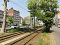 Lignes R et T du tramway de Lille - Roubaix - Tourcoing (052).JPG