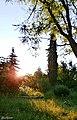 Lindja e diellit Permet - panoramio.jpg