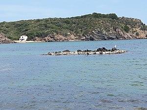 Little beach in Albufera d'es Grau.jpg