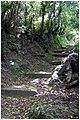 Lomba da Fazenda - panoramio (4).jpg