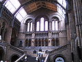London-NaturalHistoryMuseum.jpg