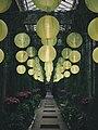 Longwood Gardens yellow lanterns Pennsylvania picture.jpg