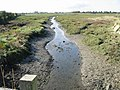 Looking W along stream draining into Fishbourne Channel - geograph.org.uk - 1021668.jpg