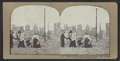 Looking east from corner Ellis and Jones ; Tall building, The San Francisco Call, from Robert N. Dennis collection of stereoscopic views 2.png
