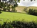 Looking towards Mynydd Rhiw-Saeson - geograph.org.uk - 520676.jpg