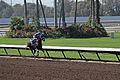 Los Alamitos Sept 2014 IMG 6721 (15131275887).jpg