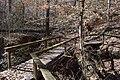 Lost Bluff Trail Mississippi 3.jpg