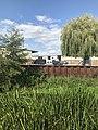 LowerGreen RoyalMillsSite IMG 8372.jpg