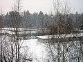 Lyovintsy, Kirovskaya oblast', Russia, 612079 - panoramio (110).jpg