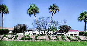 English: Hedge at MacDill AFB, Florida