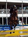 Maimarkt Mannheim 2014 - 51. Maimarkt-Turnier-165.JPG