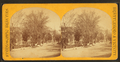 Main Street from residence of Mr. F. W. Harris, by Howe, C. L. (Caleb L.).png